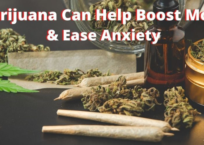 Marijuana Can Help Boost Mood & Ease Anxiety